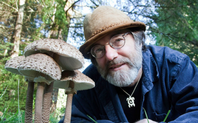Paul Stamets Neurogenesis Stack